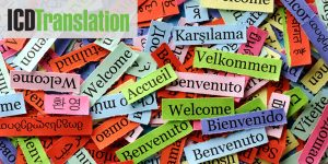 "6 Things to Know for Translation ""Newbies"""